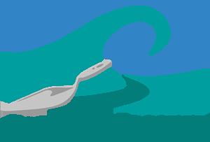 Coastal Masonry